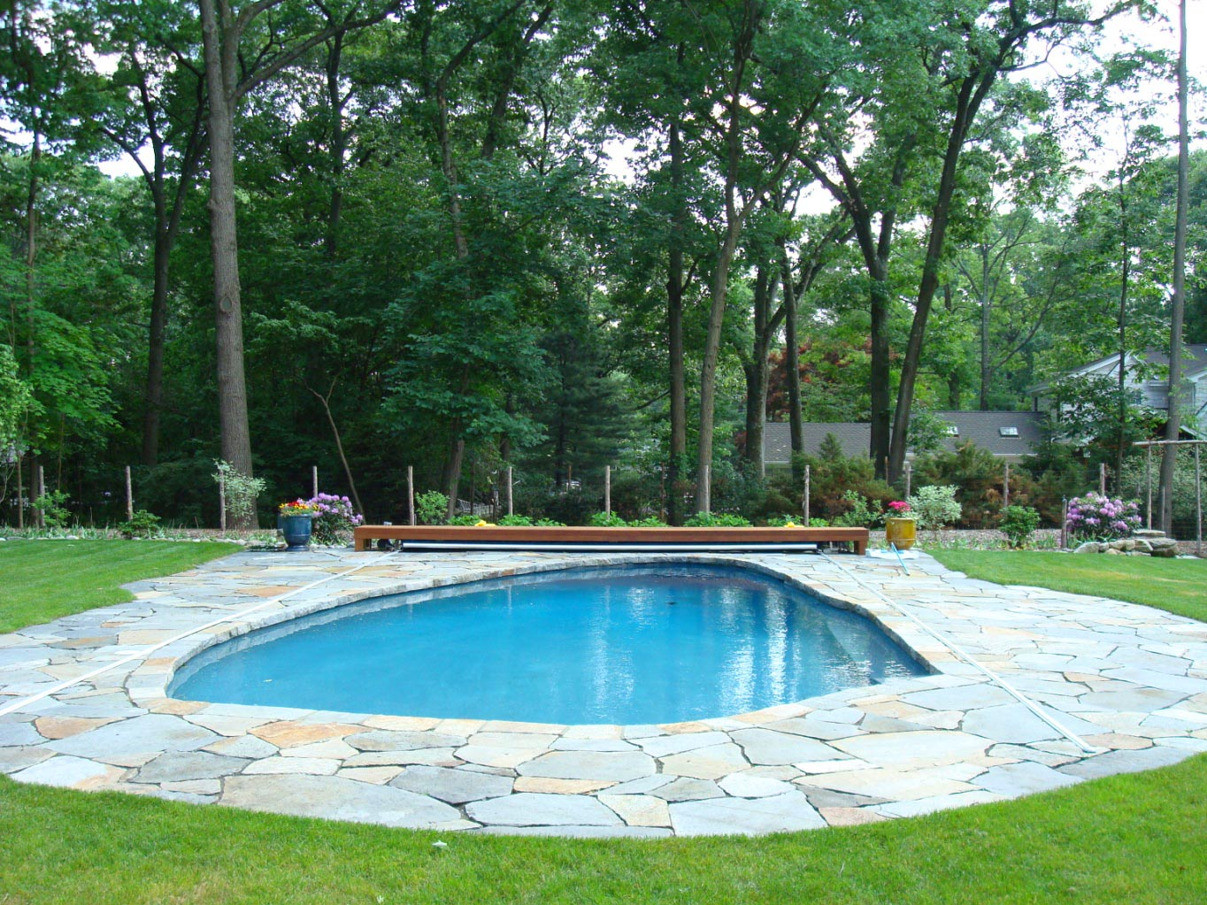 Large Retaining Wall And Pool Area On Earth Plant Care